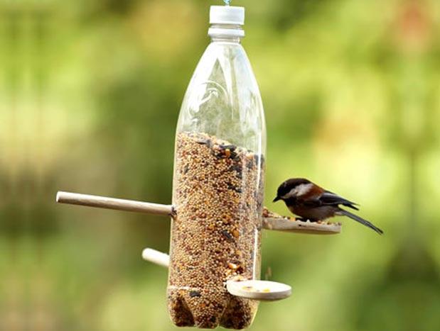 Средство от птиц своими руками